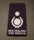 Deputy Chief Fire Officer